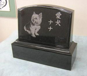 愛犬ナナちゃん.jpg