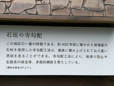 IMG_20170911_101115.jpg