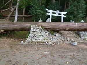 左近神社20.JPG