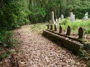森の中のお墓.JPG