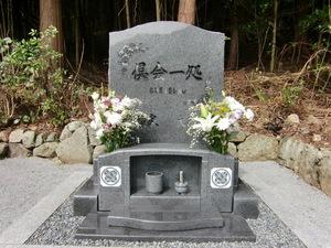 20191116桜1.JPG