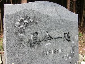 20191116桜2.JPG