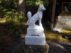 20191220狛狐8.JPG