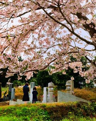 https://www.morita-stone.co.jp/weblog/img/26.jpg